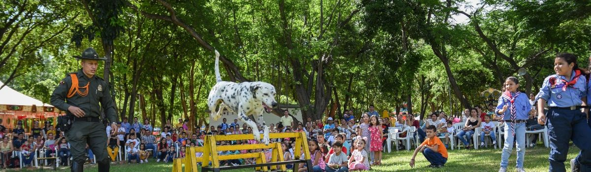 Fiestas Infantiles Cucuta